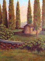 Tuscan Serenity